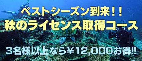 秋のライセンス取得コース!!