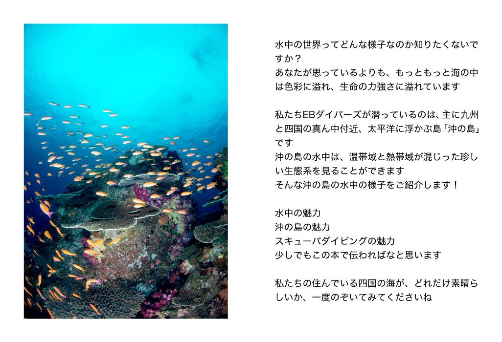 沖ノ島の水中の様子