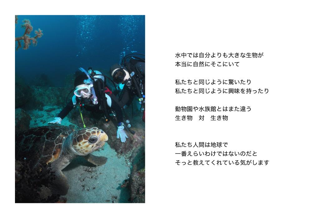 水中では自分よりも大きな生き物が本当に自然にそこにいます